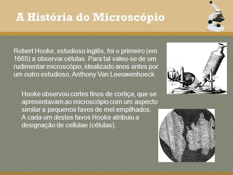 A História do Microscópio