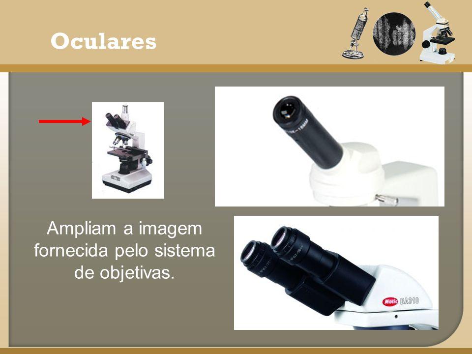 Ampliam a imagem fornecida pelo sistema de objetivas.