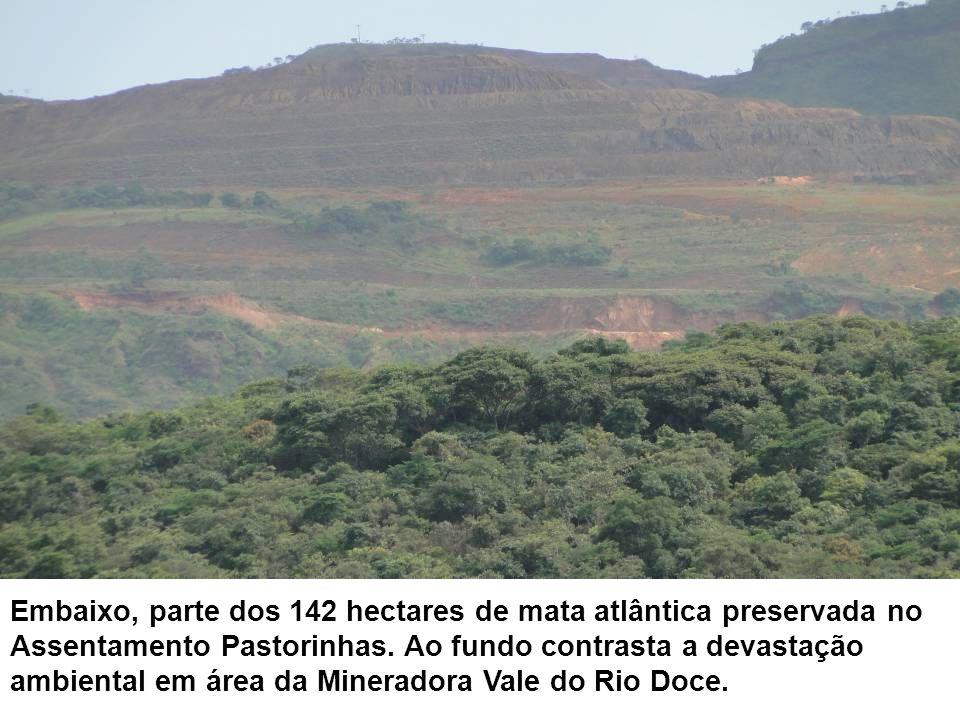 Embaixo, parte dos 142 hectares de mata atlântica preservada no Assentamento Pastorinhas.