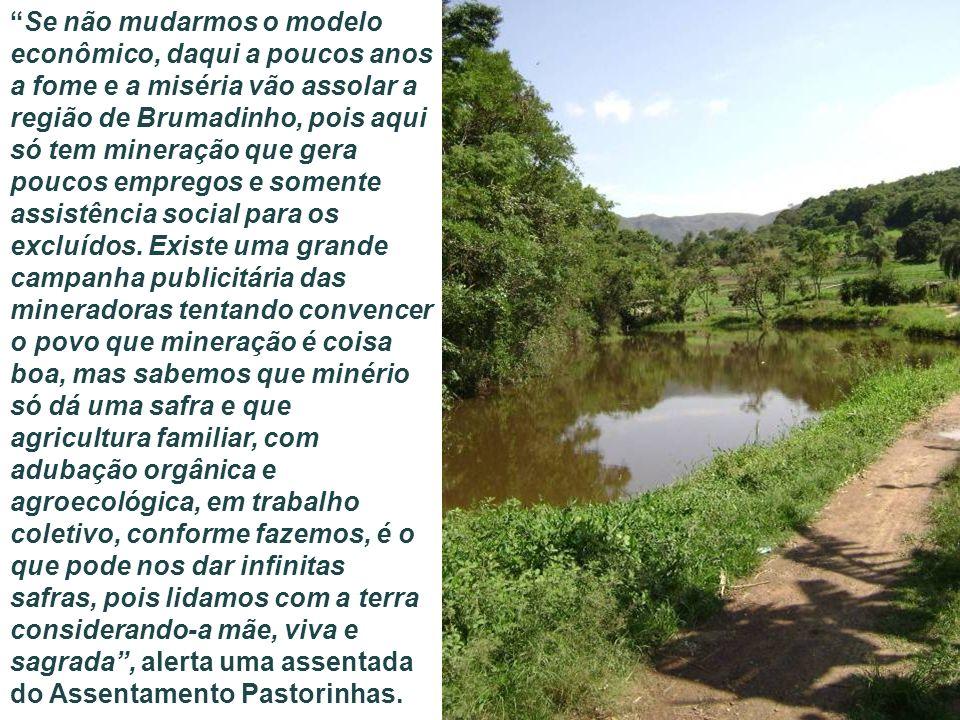 Se não mudarmos o modelo econômico, daqui a poucos anos a fome e a miséria vão assolar a região de Brumadinho, pois aqui só tem mineração que gera poucos empregos e somente assistência social para os excluídos.