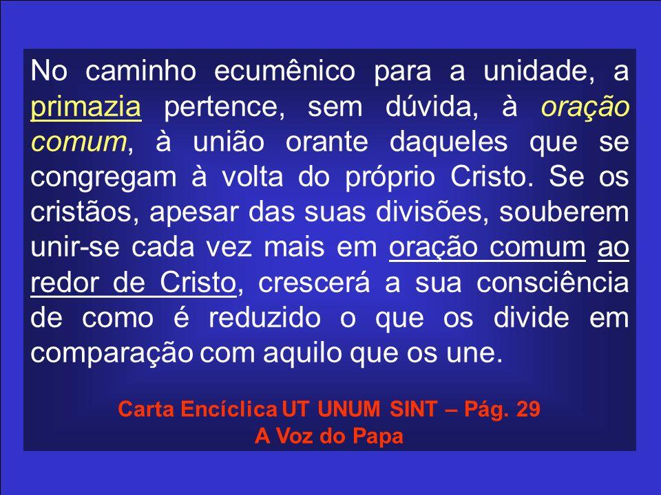 Carta Encíclica UT UNUM SINT – Pág. 29