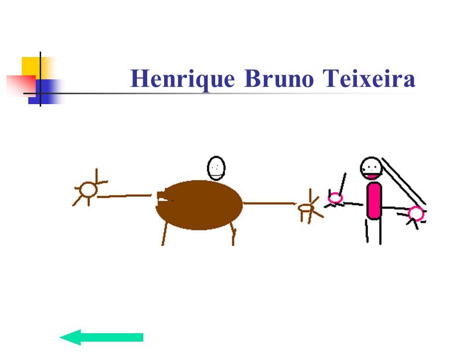 Henrique Bruno Teixeira
