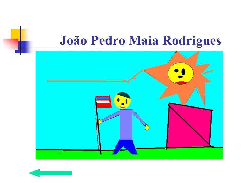 João Pedro Maia Rodrigues