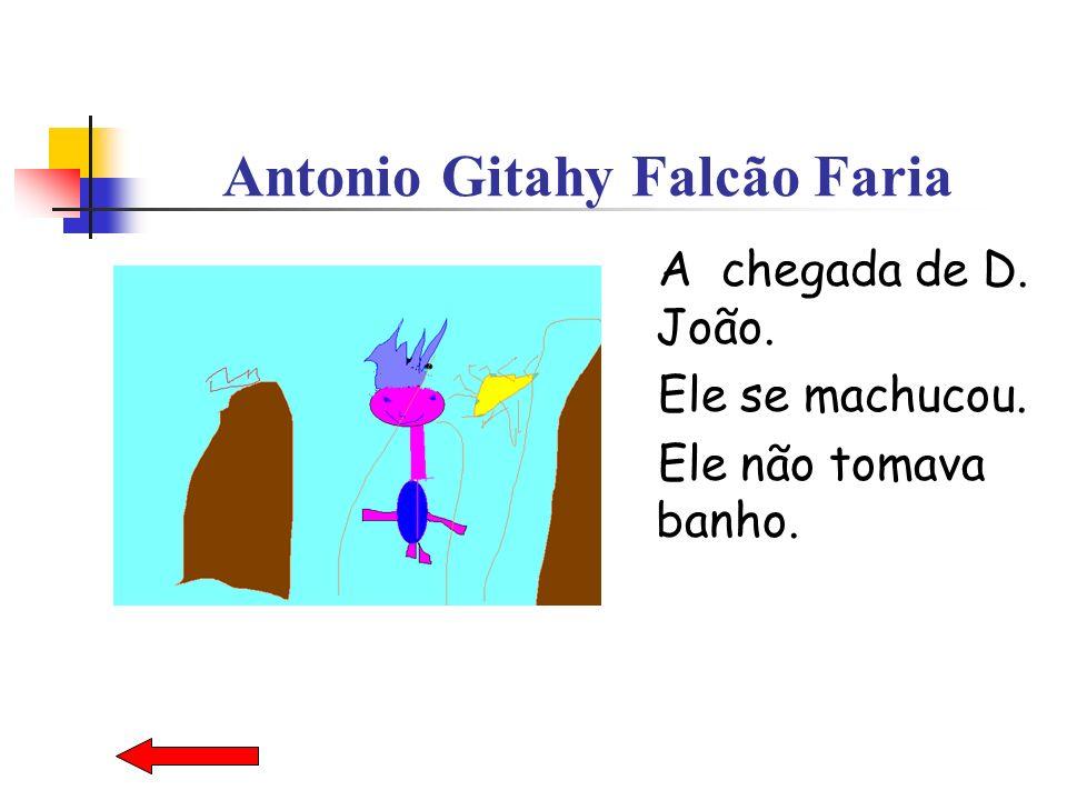 Antonio Gitahy Falcão Faria