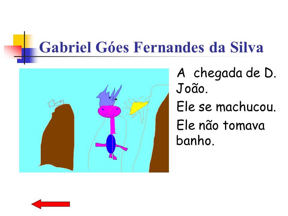 Gabriel Góes Fernandes da Silva