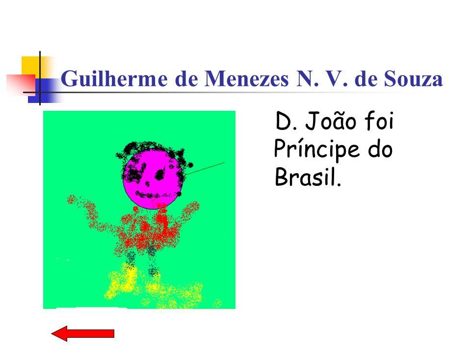 Guilherme de Menezes N. V. de Souza