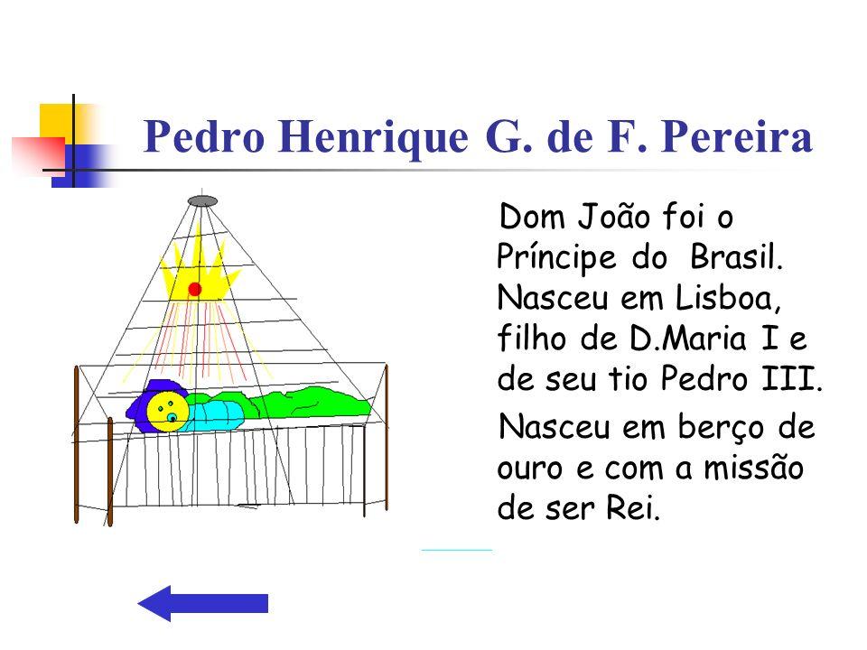 Pedro Henrique G. de F. Pereira