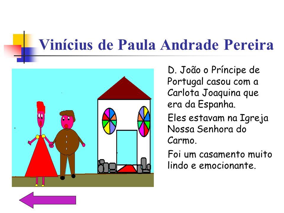 Vinícius de Paula Andrade Pereira