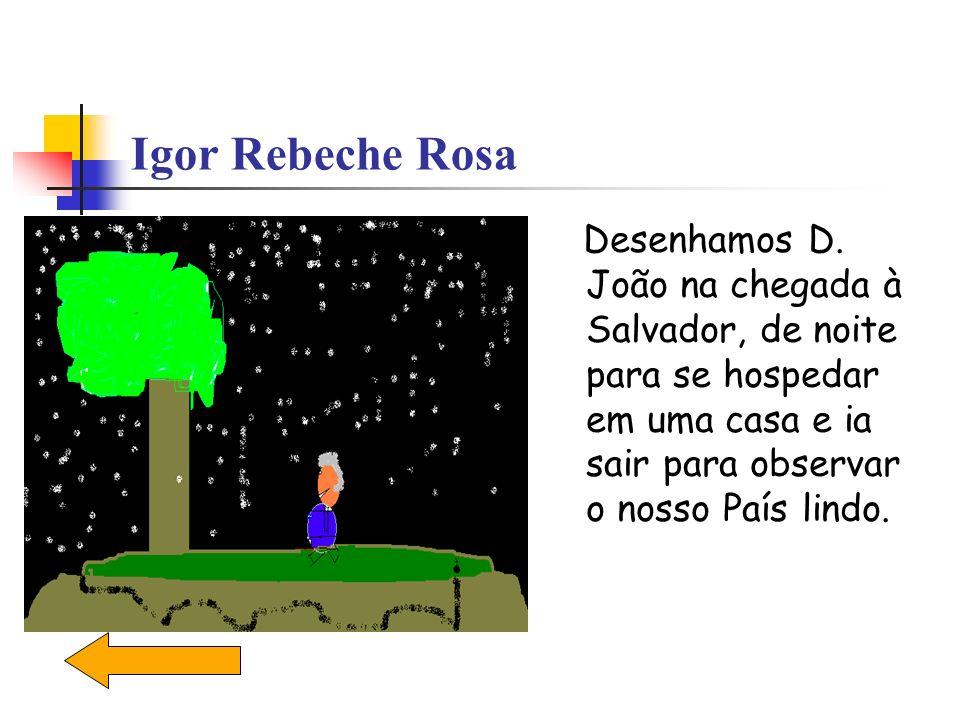 Igor Rebeche Rosa Desenhamos D.