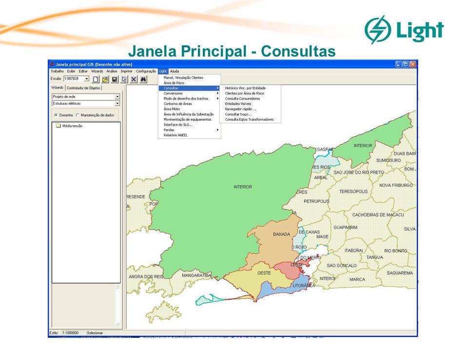 Janela Principal - Consultas