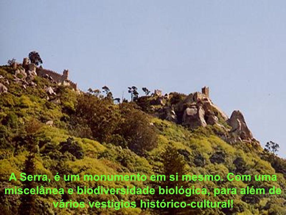 A Serra, é um monumento em si mesmo