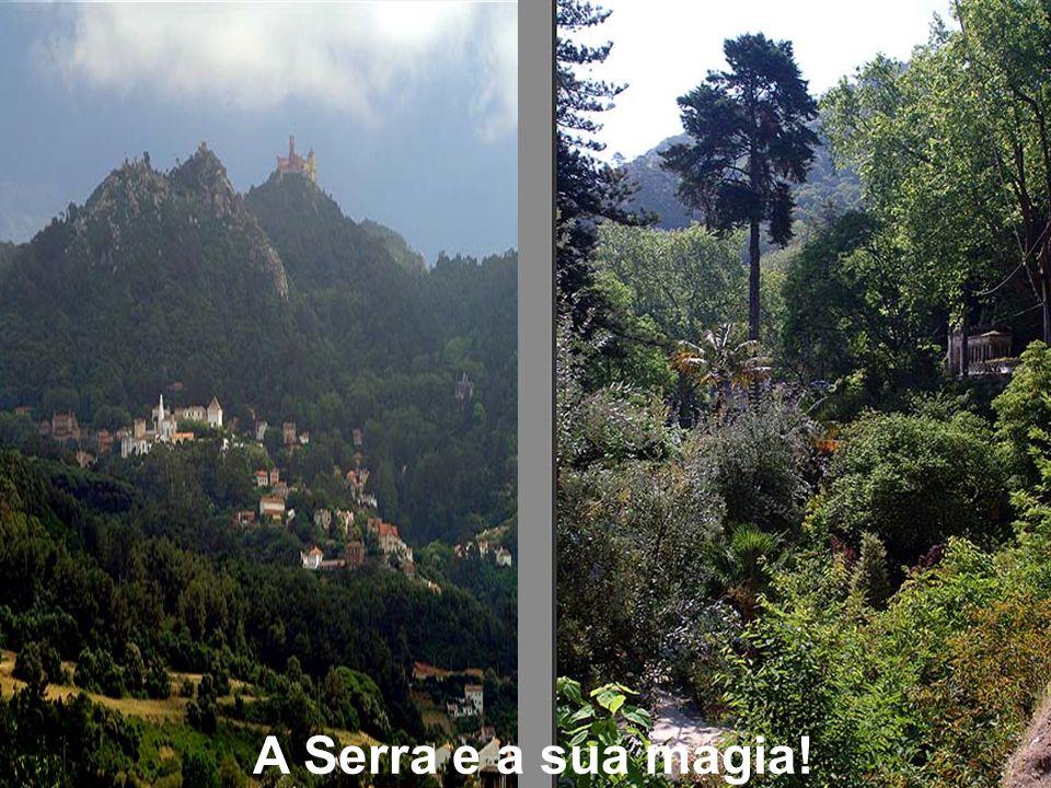 A Serra e a sua magia!