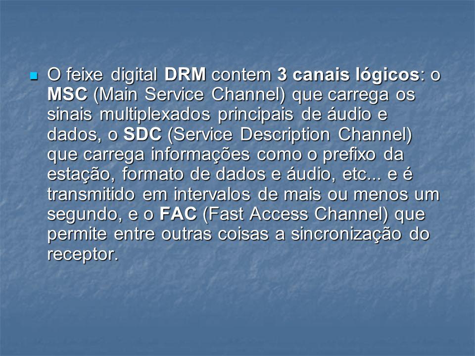 O feixe digital DRM contem 3 canais lógicos: o MSC (Main Service Channel) que carrega os sinais multiplexados principais de áudio e dados, o SDC (Service Description Channel) que carrega informações como o prefixo da estação, formato de dados e áudio, etc...