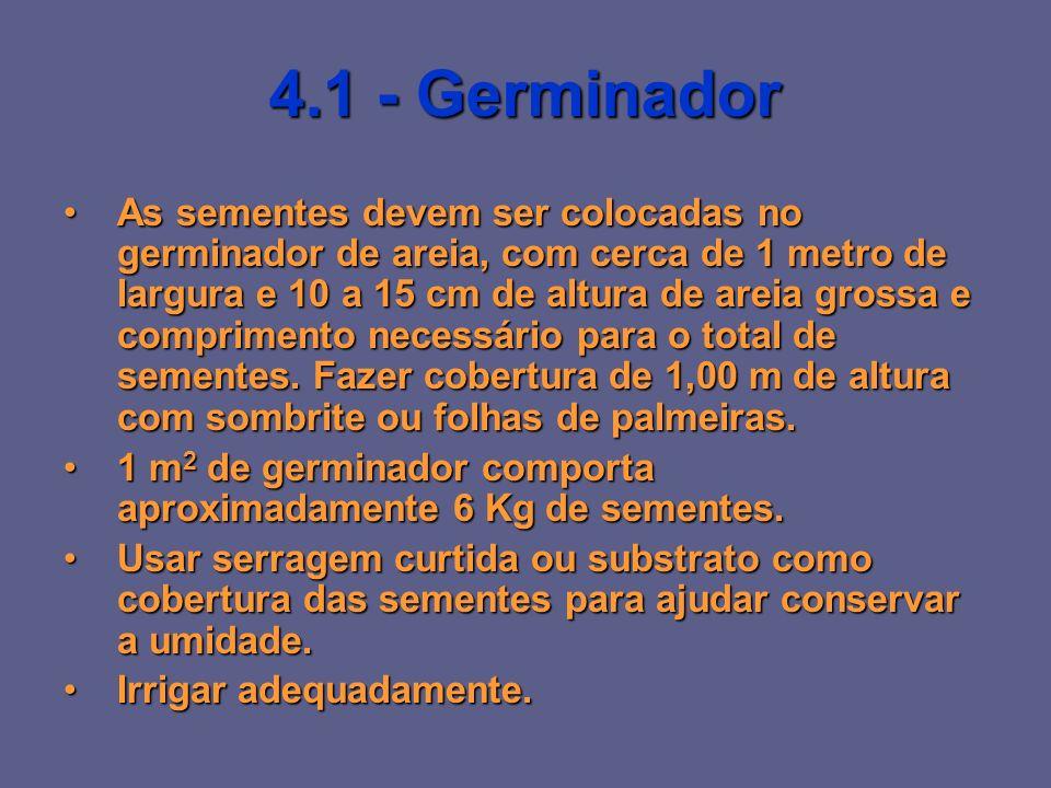4.1 - Germinador