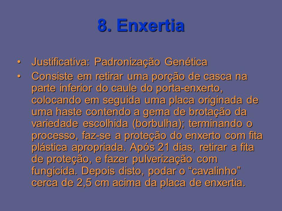 8. Enxertia Justificativa: Padronização Genética