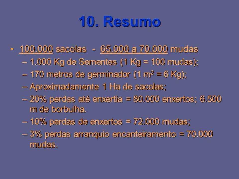 10. Resumo 100.000 sacolas - 65.000 a 70.000 mudas