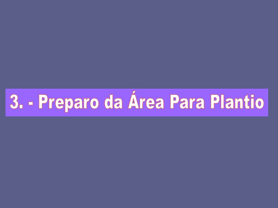 3. - Preparo da Área Para Plantio