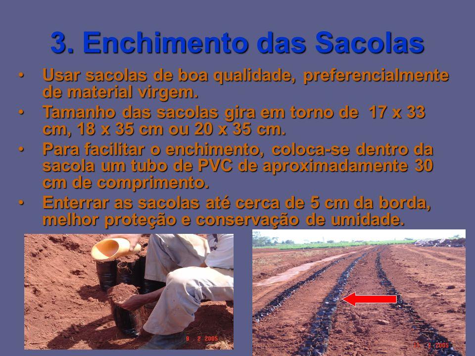 3. Enchimento das Sacolas
