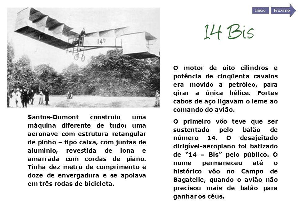O motor de oito cilindros e potência de cinqüenta cavalos era movido a petróleo, para girar a única hélice. Fortes cabos de aço ligavam o leme ao comando do avião.