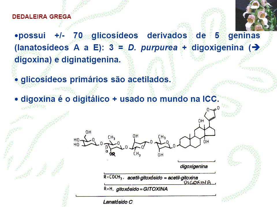 glicosídeos primários são acetilados.