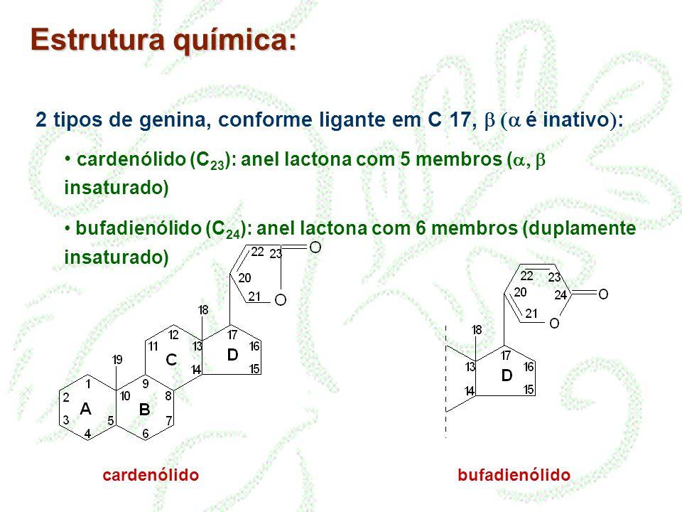 Estrutura química: 2 tipos de genina, conforme ligante em C 17, b (a é inativo): cardenólido (C23): anel lactona com 5 membros (a, b insaturado)