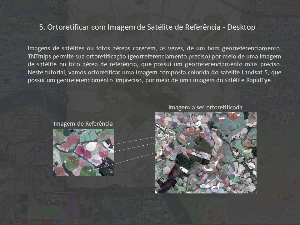 5. Ortoretificar com Imagem de Satélite de Referência - Desktop