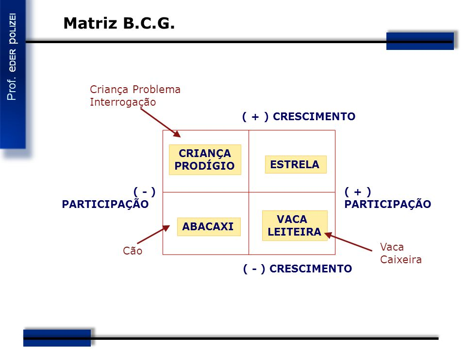 Matriz B.C.G. Criança Problema Interrogação ( + ) CRESCIMENTO CRIANÇA