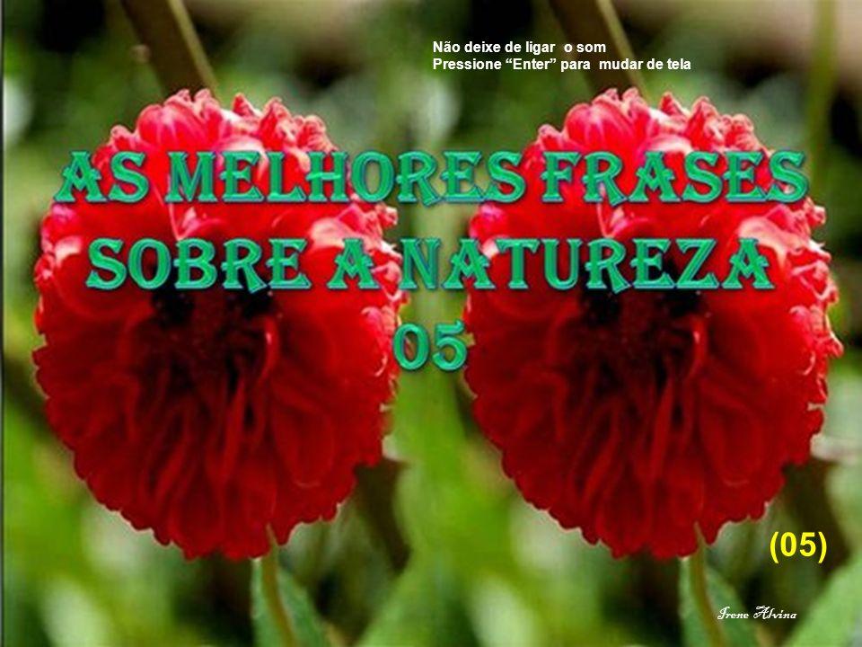 (05) Irene Alvina Não deixe de ligar o som