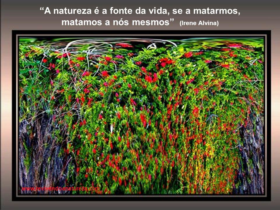 A natureza é a fonte da vida, se a matarmos,