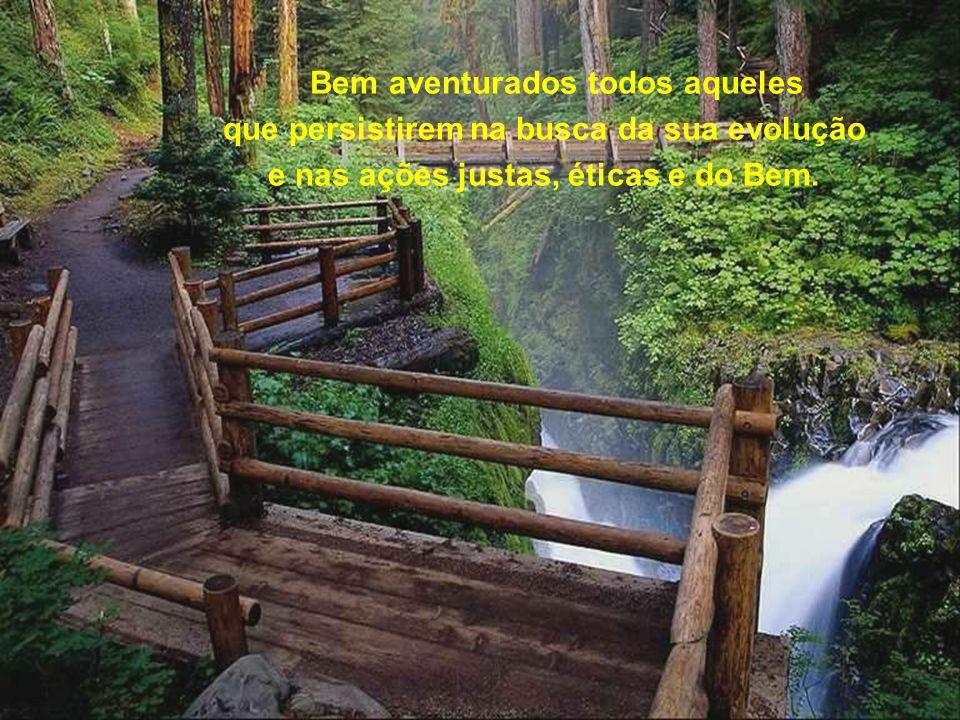 Bem aventurados todos aqueles que persistirem na busca da sua evolução