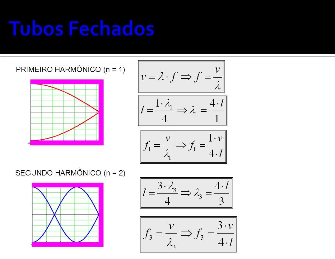 PRIMEIRO HARMÔNICO (n = 1)
