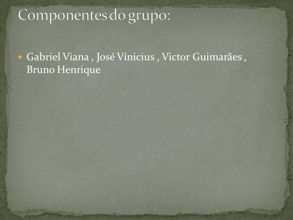 Componentes do grupo: Gabriel Viana , José Vínicius , Victor Guimarães , Bruno Henrique