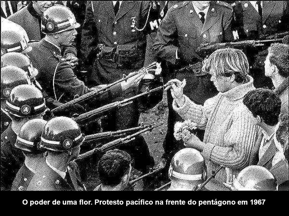 O poder de uma flor. Protesto pacífico na frente do pentágono em 1967