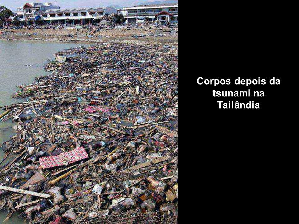 Corpos depois da tsunami na Tailândia
