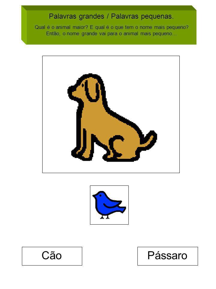 Cão Pássaro Palavras grandes / Palavras pequenas.