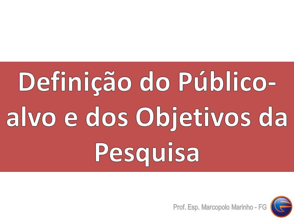 Definição do Público-alvo e dos Objetivos da Pesquisa
