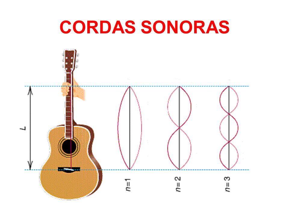 CORDAS SONORAS