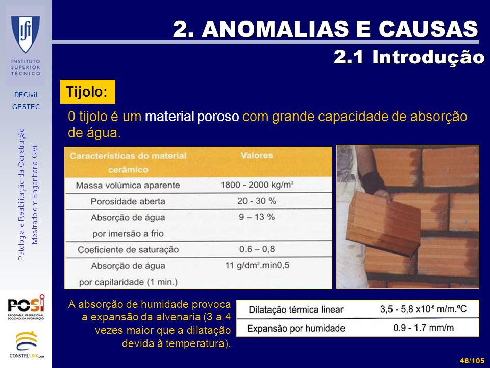 2. ANOMALIAS E CAUSAS 2.1 Introdução Tijolo: