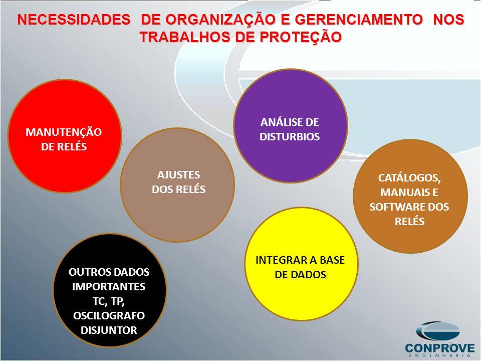 NECESSIDADES DE ORGANIZAÇÃO E GERENCIAMENTO NOS TRABALHOS DE PROTEÇÃO