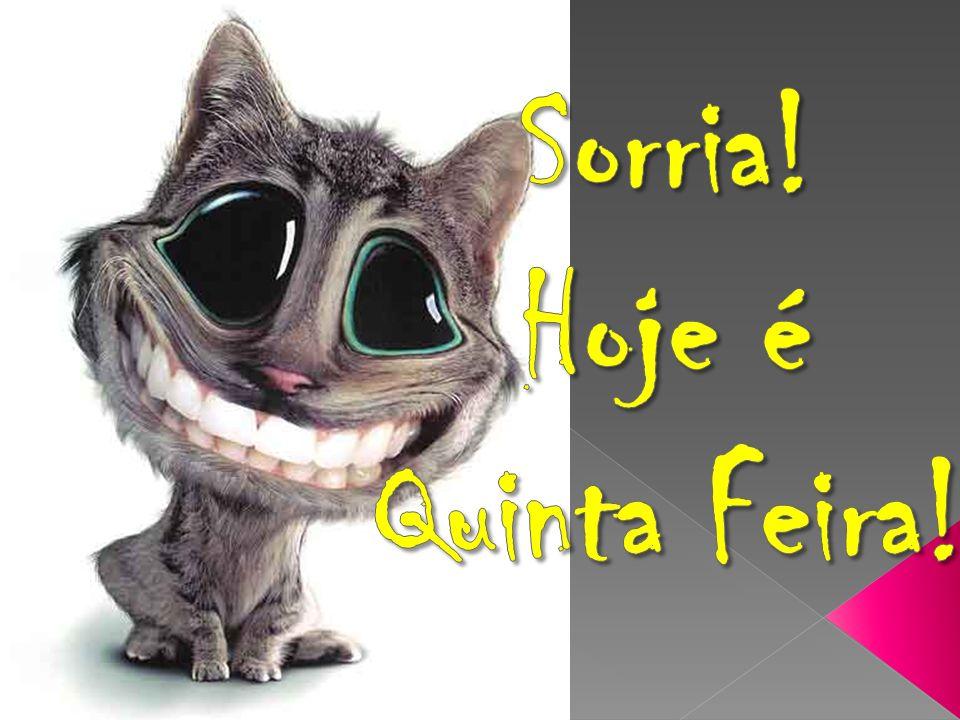 Sorria! Hoje é Quinta Feira!