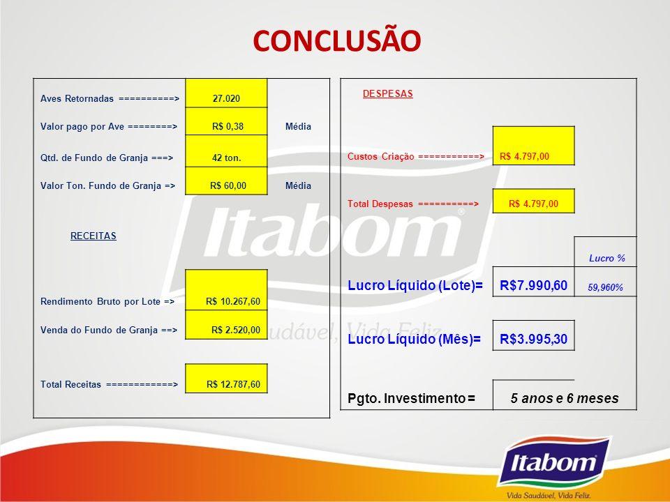 CONCLUSÃO Lucro Líquido (Lote)= R$7.990,60 Lucro Líquido (Mês)=
