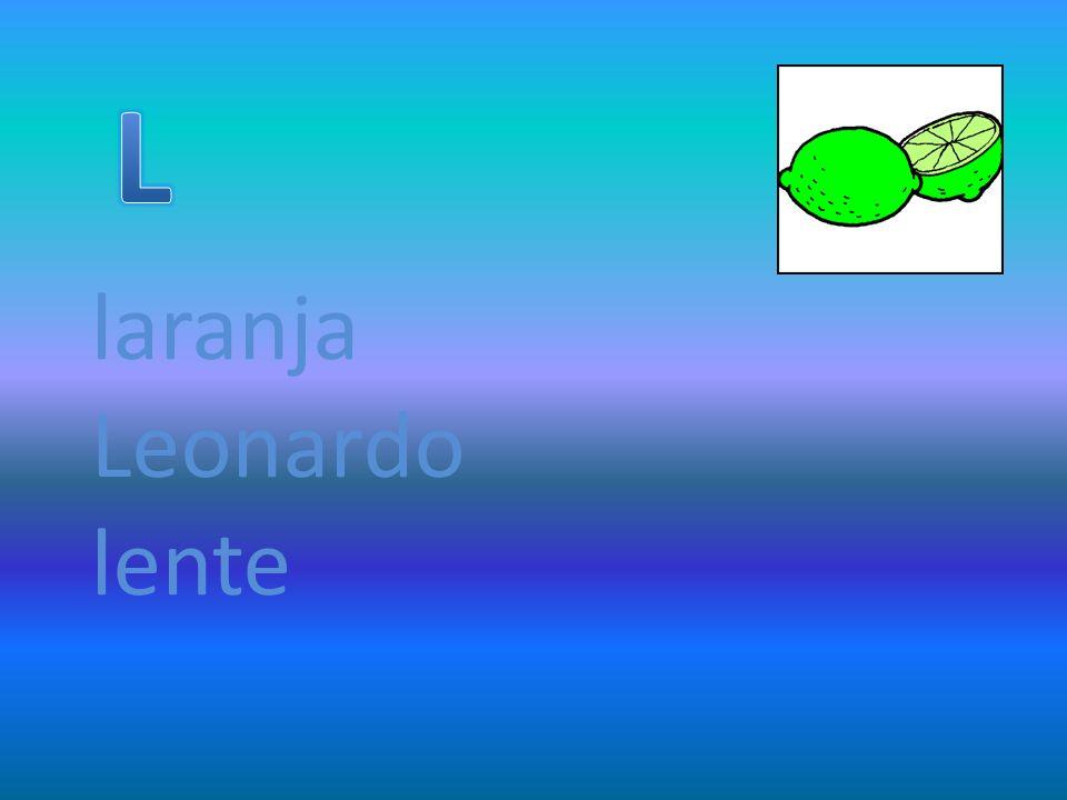 laranja Leonardo lente