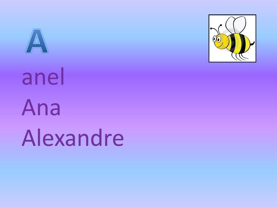 A anel Ana Alexandre