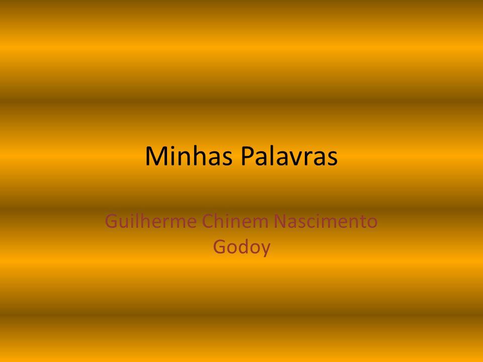 Guilherme Chinem Nascimento Godoy