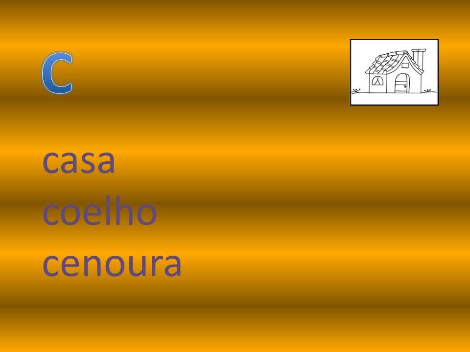 C casa coelho cenoura