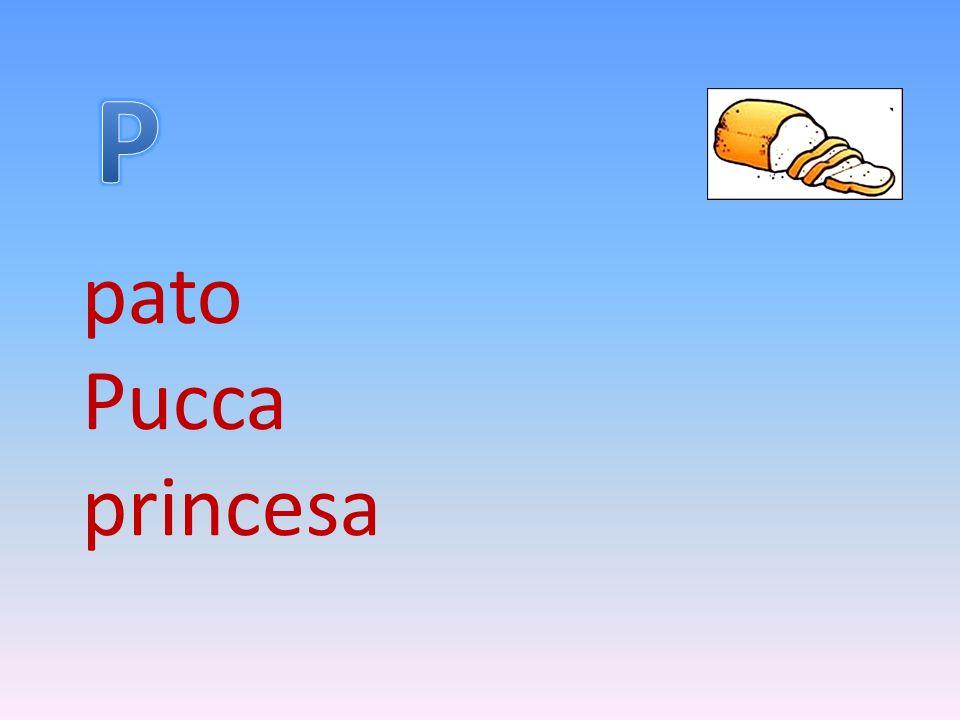 P pato Pucca princesa
