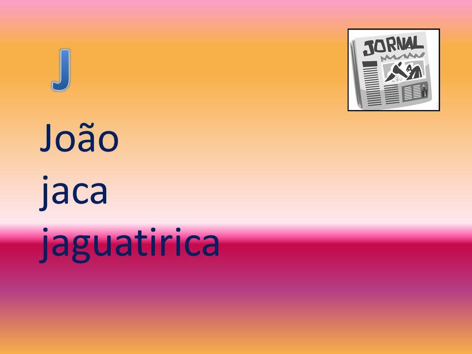 J João jaca jaguatirica