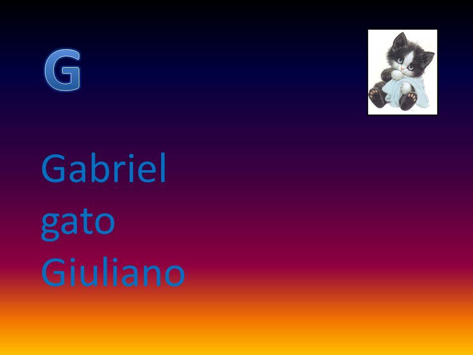 G Gabriel gato Giuliano