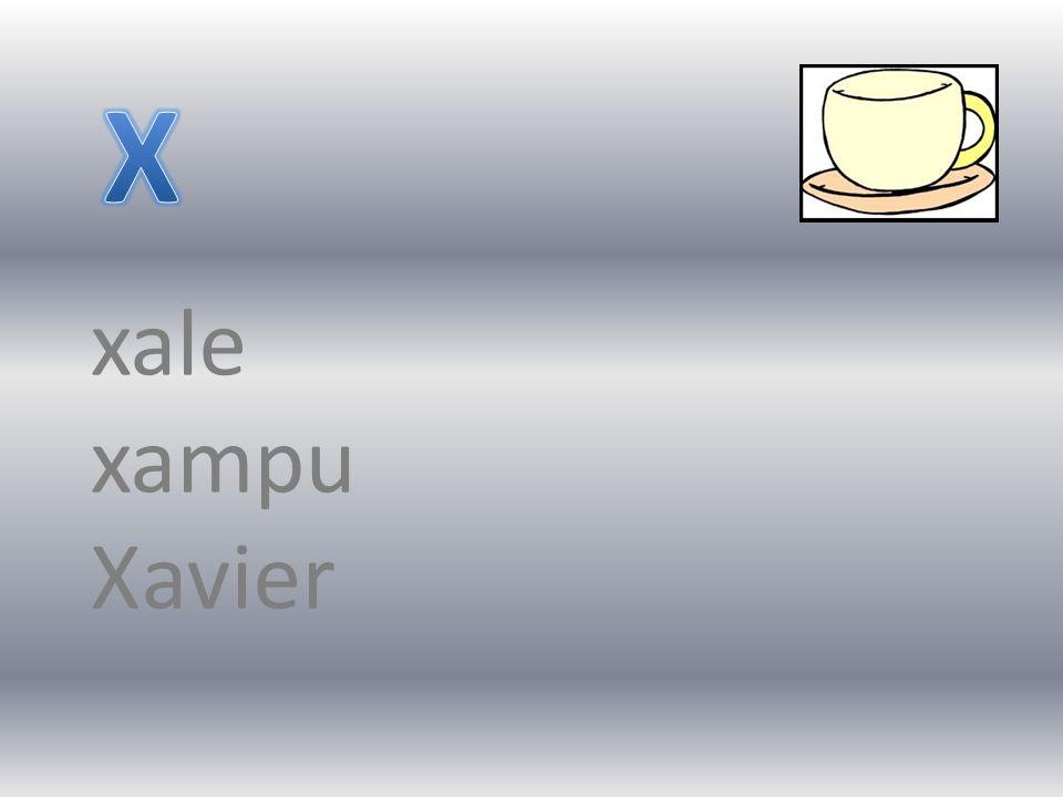 X xale xampu Xavier