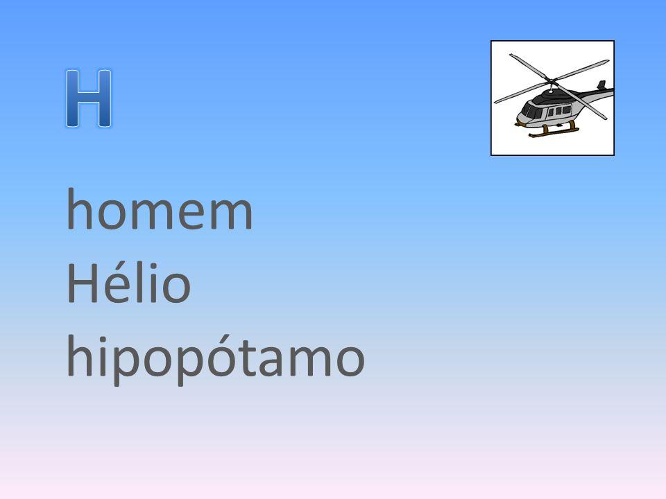 homem Hélio hipopótamo